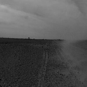 COCO MOYA Desierto