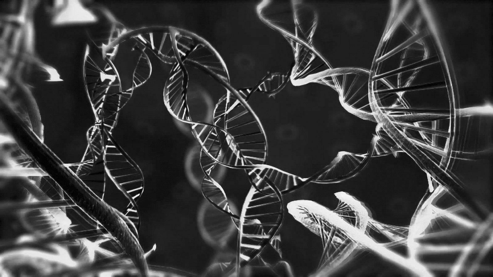 17.09.2018. 16h Laboratorios I – CNP Partners. Alteraciones Cognitivas y Neurológicas con NELI PARGA