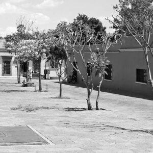 Museo Belber Jiménez de Oaxaca