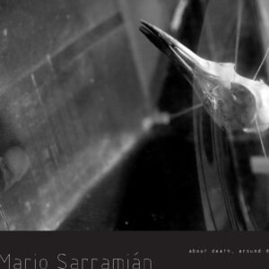 MARIO SARRAMIÁN About death, around death