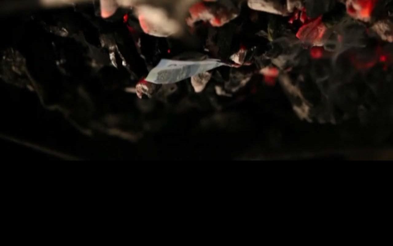 videoarte_proyector2014_heliogabalo_quemadebilletes