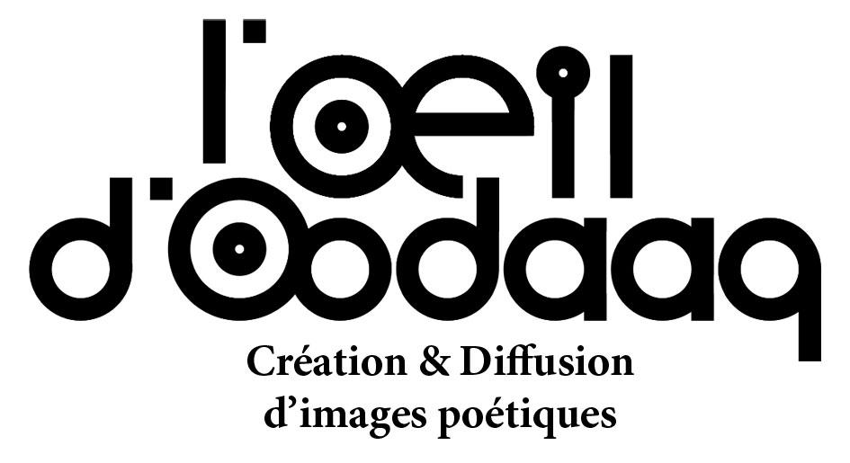 logo_OODAAQ