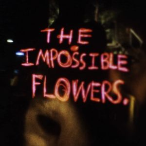 JEFF ZORRILLA The Impossible Flowers