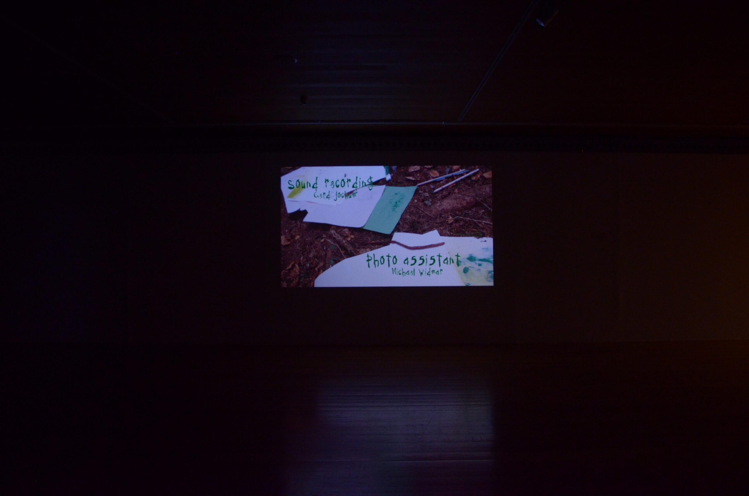 PROYECTOR2020_El Águila_12.09.2020_Presentación_Julia Tazreiter_031